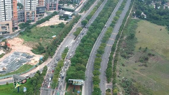 Cây xanh trồng trên đường tại TPHCM có tán không quá rộng và độ cao vừa phải  tránh trường hợp cây ngã đổ gây tai nạn (Ảnh cây xanh trên đường Mai Chí Thọ). Ảnh: CAO THĂNG
