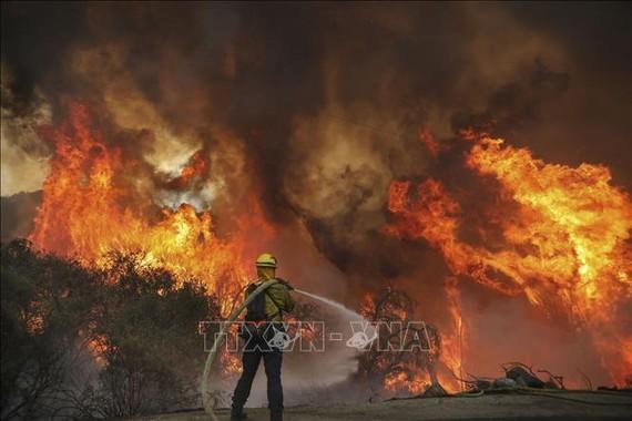 Lính cứu hỏa nỗ lực dập lửa tại đám cháy rừng ở Jamul, bang California, Mỹ. Ảnh: AFP/TTXVN