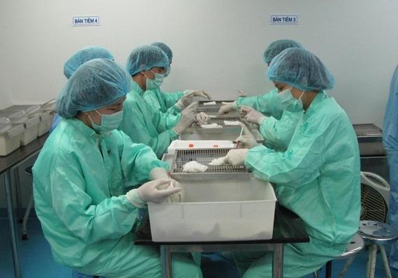 Tháng 6-2020, VABIOTECH đã thử nghiệm vaccine COVID-19 trên chuột