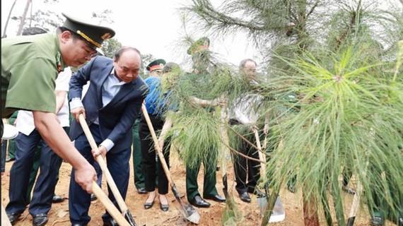 Chủ tịch nước Nguyễn Xuân Phúc trồng cây tại Khu di tích lịch sử K9 - Đá Chông. Ảnh: TTXVN
