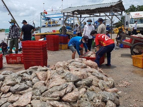 Hoạt động mua bán thủy hải sản ở thị trấn Gành Hào,  huyện Đông Hải (Bạc Liêu)