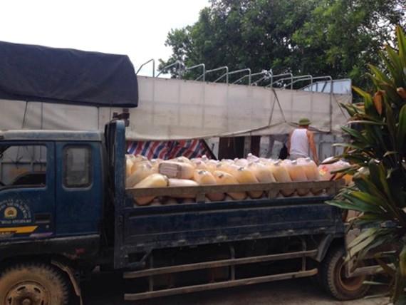 Số mỡ động vật không rõ nguồn gốc đã được bốc dỡ sang xe tải để đưa đi tiêu hủy theo quy định