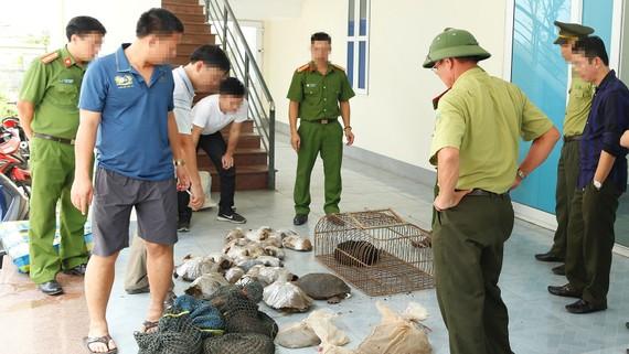 Số động vật hoang dã bị bắt giữ