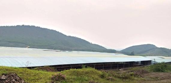 Một góc chuồng trại bỏ không tại Dự án chăn nuôi bò Bình Hà ở Hà Tĩnh