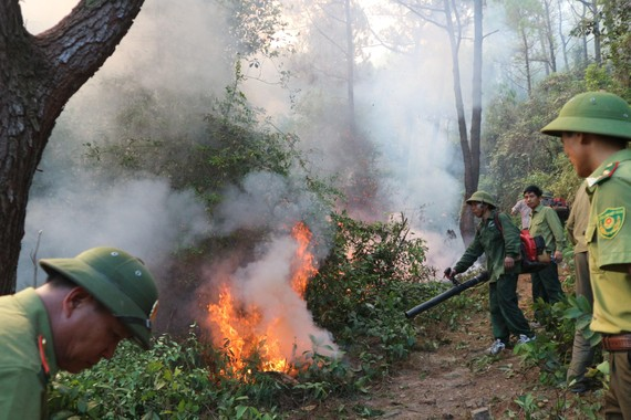 Lực lượng chức năng tham gia chữa cháy rừng ở huyện Nghi Xuân