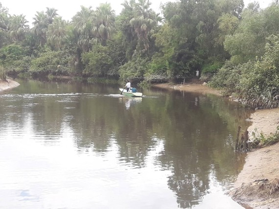 Khu vực sông cầu Đông, nơi được cho là xuất hiện cá sấu