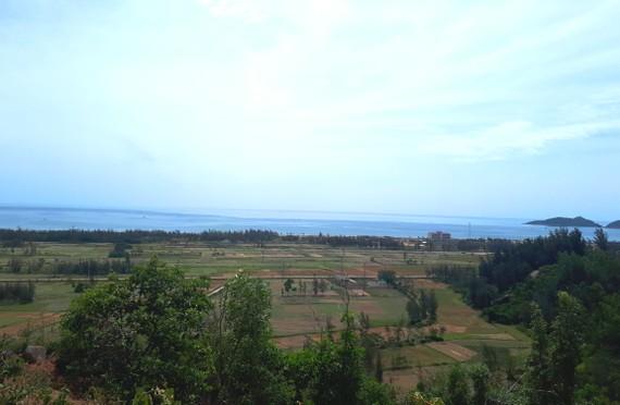 Nhiều diện tích rừng ở ven biển huyện Lộc Hà, tỉnh Hà Tĩnh đã góp phần tạo lá chắn xanh bảo vệ cuộc sống người dân. Ảnh: DƯƠNG QUANG