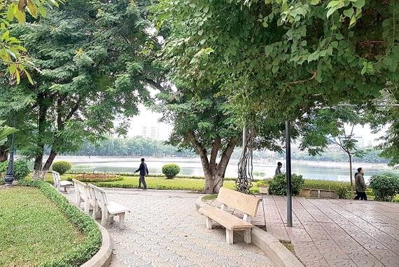 Hà Nội ngày đầu đông                                                   Ảnh: P. Giang