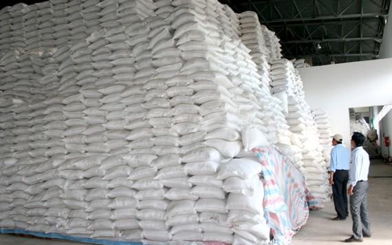 Dự báo xuất khẩu gạo sắp tới sẽ tiếp tục khởi sắc