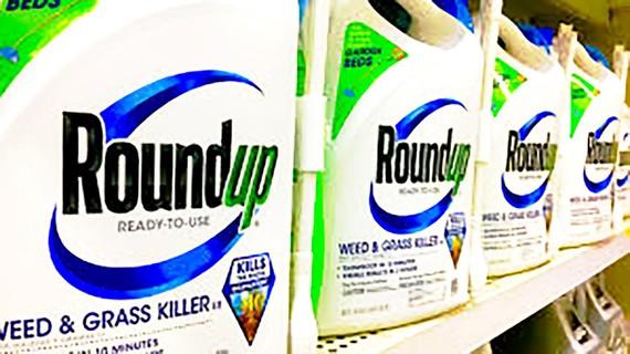Nhiều nước trên thế giới đã cấm sản phẩm của Monsanto  do chứa glyphosate