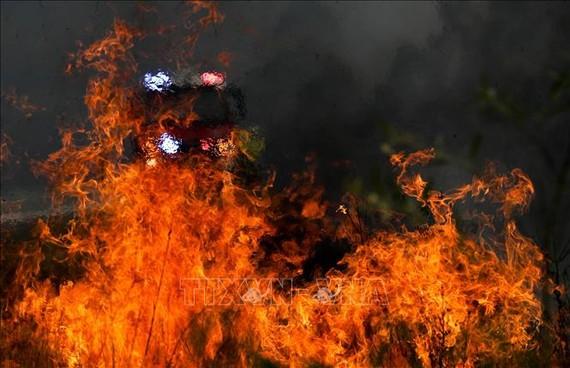 Cháy rừng gần Taree, bang New South Wales, Australia ngày 11-11-2019. Ảnh: TTXVN