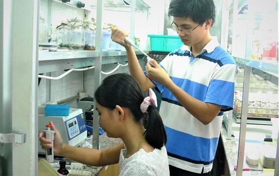 Sinh viên Trường ĐH Khoa học tự nhiên  (ĐH Quốc gia TPHCM) thực hành tại phòng thí nghiệm