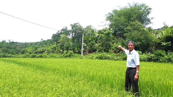 Ông Nguyễn Ngọc Liệu chỉ khu đất vườn rừng của gia đình  mà ông đã hiến cho xã làm công trình phúc lợi