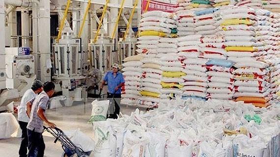 Giá gạo Việt Nam đang cao nhất trong nhóm các nước xuất khẩu gạo gồm Thái Lan, Ấn Độ, Pakistan, Miến Điện