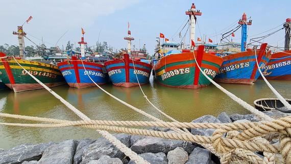 """Ngư dân bị """"treo"""" tiền hỗ trợ đánh bắt xa bờ"""