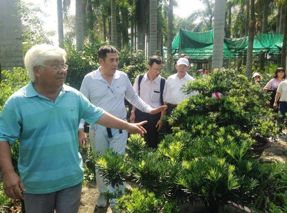 Du khách tham quan nhà vườn trên địa bàn TPHCM. Ảnh: THANH HẢI