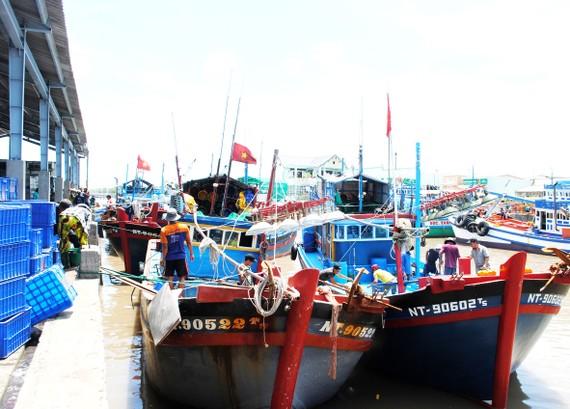 Việc xếp dỡ hàng ở các cảng chủ yếu thủ công, chưa được cơ giới hóa