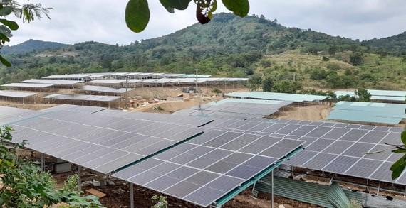 Trang trại của ông Nguyễn Huy Bình (xã Ea Nuôl, huyện Buôn Đôn, tỉnh Đắk Lắk)  đầu tư hệ thống ĐMTMN vi phạm các quy định về đất đai và xây dựng
