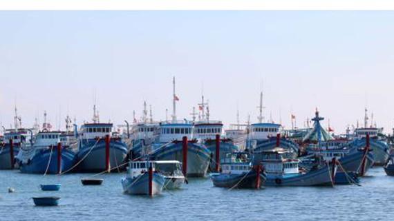 Bình Thuận chi gần 27 tỷ đồng hỗ trợ tàu cá hoạt động xa bờ