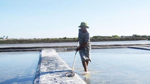 Diêm dân chăm sóc ruộng muối ở cánh đồng muối An Ngãi