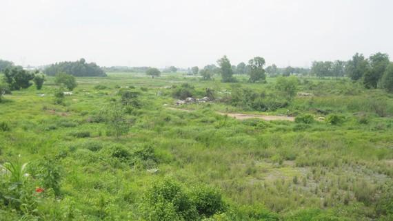 Hàng ngàn hécta đất tại huyện Củ Chi chưa được sử dụng hiệu quả trong nhiều năm qua