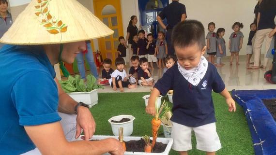 Hướng dẫn các bé làm quen với tự nhiên tại Trường Mầm non quốc tế Kindy City. Ảnh: HOÀNG HÙNG