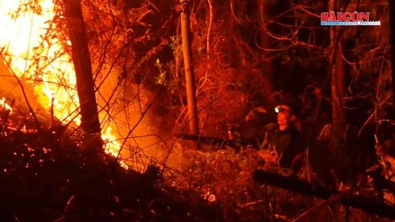 Lực lượng chức năng dập lửa trong vụ cháy rừng tại Hà Tĩnh hồi tháng 7-2019