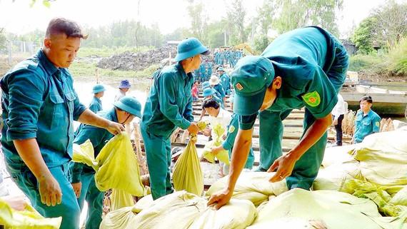Đắp đập ngăn nước mặn ở cống Trùm Thuật huyện Trần Văn Thời (Cà Mau)