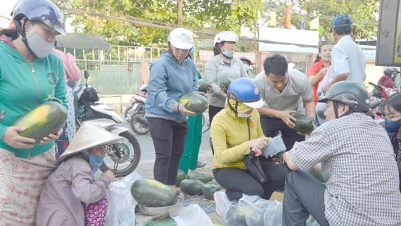 Người dân quận 9 mua dưa hấu ủng hộ nông dân Gia Lai