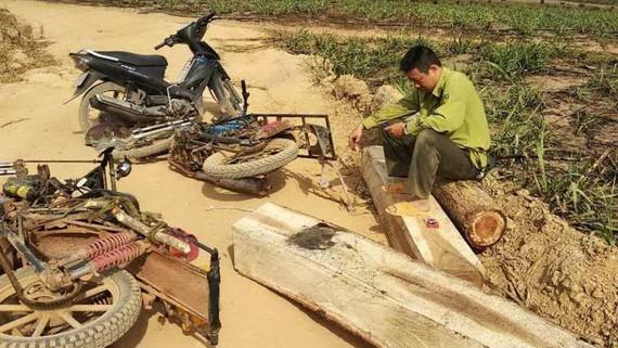 Hiện trường kiểm lâm Ngô Lê Nhật Tiến chặn bắt gỗ lậu  bị lâm tặc hành hung