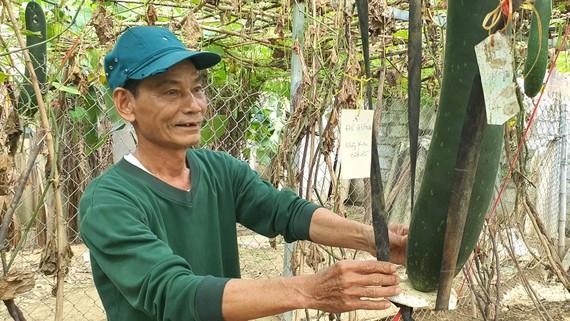 Ông Lê Hải Dương, 70 tuổi, người tham mưu cho xã Xuân Thủy việc nhận lương hưu từ góp lúa