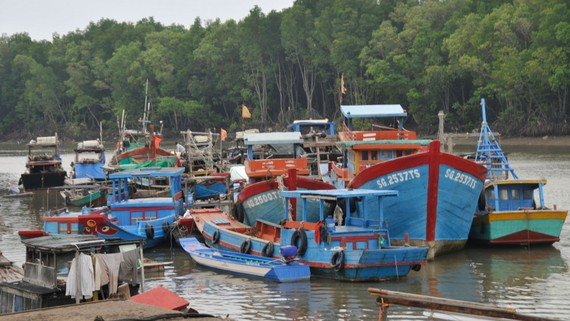 Ghe tàu ở huyện đảo Cần Giờ (TPHCM) trong một lần tập trung trú ẩn tránh bão. Ảnh: CAO THĂNG