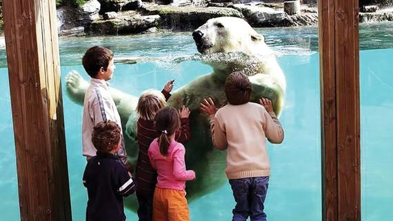 Khách tham quan Vườn thú Flèche