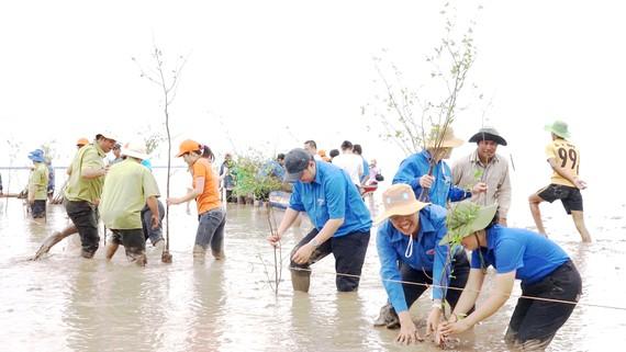 """Nhóm bạn trẻ của chương trình """"Hạnh Phúc Xanh"""" trồng rừng ngập mặn"""