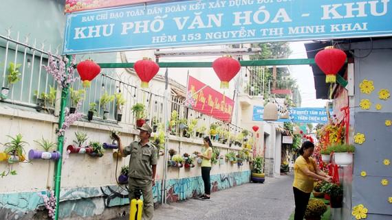 Người dân tích cực chăm sóc mảng xanh tại khu phố 6, phường Phạm Ngũ Lão, quận 1