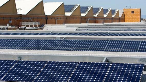 Điện năng lượng mặt trời hiện đang ngày càng phổ biến tại Mỹ. Nguồn: REUTERS