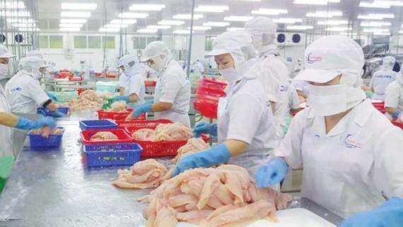 Cà Mau: Phấn đấu xuất khẩu thủy sản đạt 1,65 tỷ USD