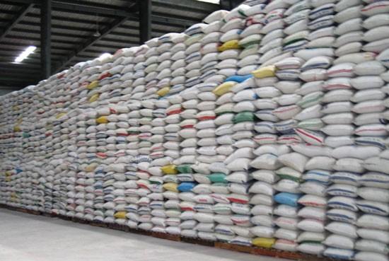 Số lượng gạo tồn đọng trong kho của các DN ở ĐBSCL rất lớn.