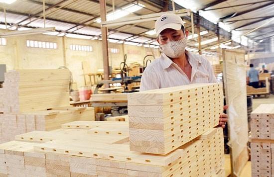 Thiệt hại ban đầu đối với các DN gỗ ước tính 3.066 tỷ đồng, tương đương gần 25 tỷ đồng mỗi DN.