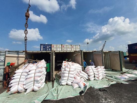 Một sà lan gạo cập cảng Mỹ Thới (An Giang) để chuyển gạo lên đóng container chờ xuất khẩu.