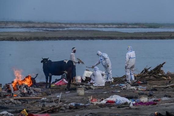 Người thân thực hiện những nghi thức cuối cùng trước khi hỏa táng người thân qua đời do COVID-19 bên bờ sông Hằng [Prakash Singh / AFP]
