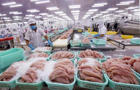 Thủy sản Việt Nam hiện nay đang được ưa chuộng tại nhiều quốc gia.