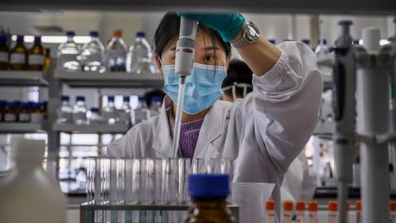 Cố gắng cuối năm 2021, chậm nhất đầu năm 2022 sẽ có 1 nhà máy sản xuất vaccine quy mô lớn đi vào hoạt động. Ảnh: TN