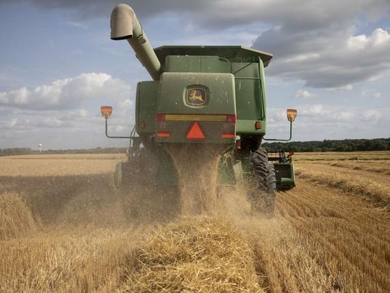 China Hits Back at Trump by Weakening Yuan, Halting Crop Imports
