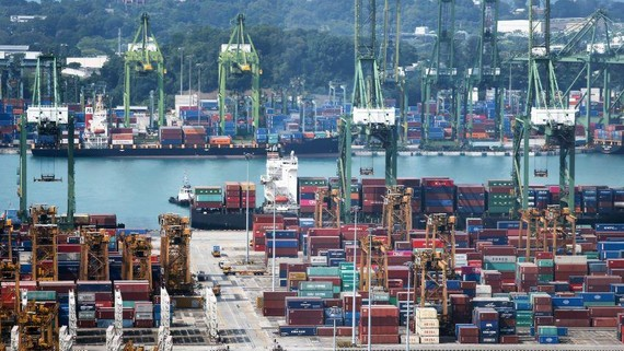 A port in Singapore. The European Union's trade pacts with Singapore and Vietnam could hurt other ASEAN members if the EU increases its investment in those two countries at the expense of the others. (Photo by Kosaku Mimura)