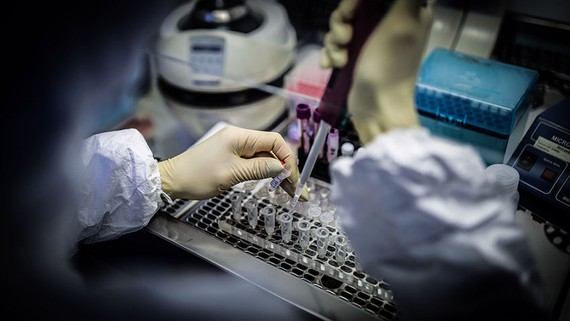 A medical staffer in Russia works with test systems for coronavirus. The world is facing an acute shortage of test kits for the virus, and private companies are scrambling to fill the gap.   © AP