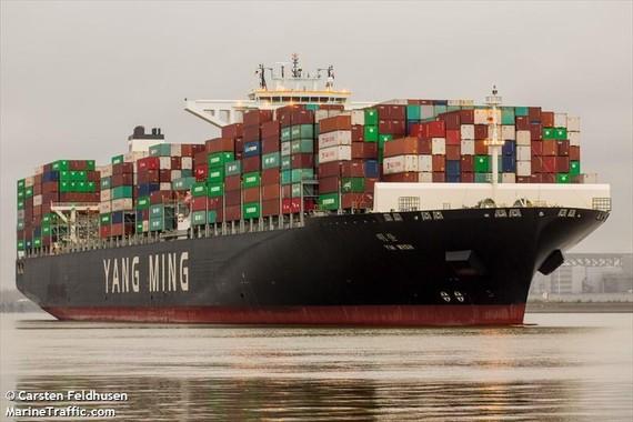 Tàu YM Wish dài 368 m, rộng 51 m có khả năng chở được gần 14.000 container. Ảnh: MarineTraffic.com