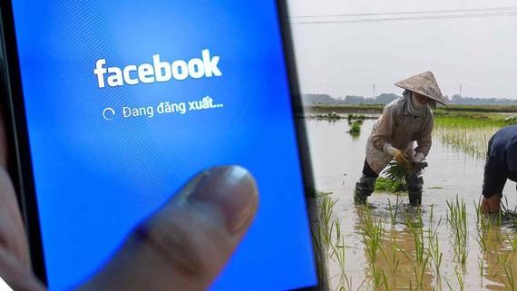Facebook nhận thấy cơ hội tăng trưởng tại thị trường nông thôn Việt Nam với lượng lớn người dùng ngày càng thạo dùng di động thông minh - Ảnh: AFP