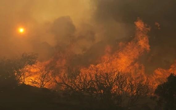 Đám cháy lan rộng tại nhiều nơi ở California. Ảnh: Reuters