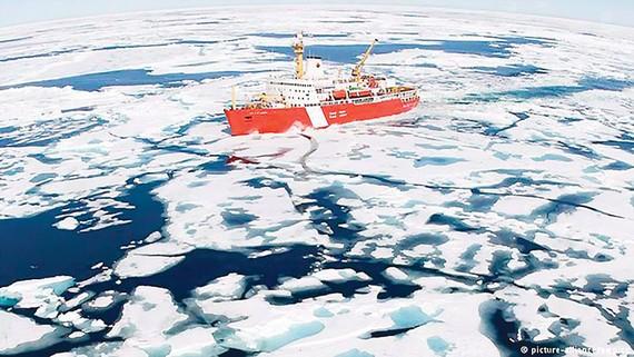 Các nước nhất trí không đánh bắt cá ở Bắc cực vì mục đích thương mại